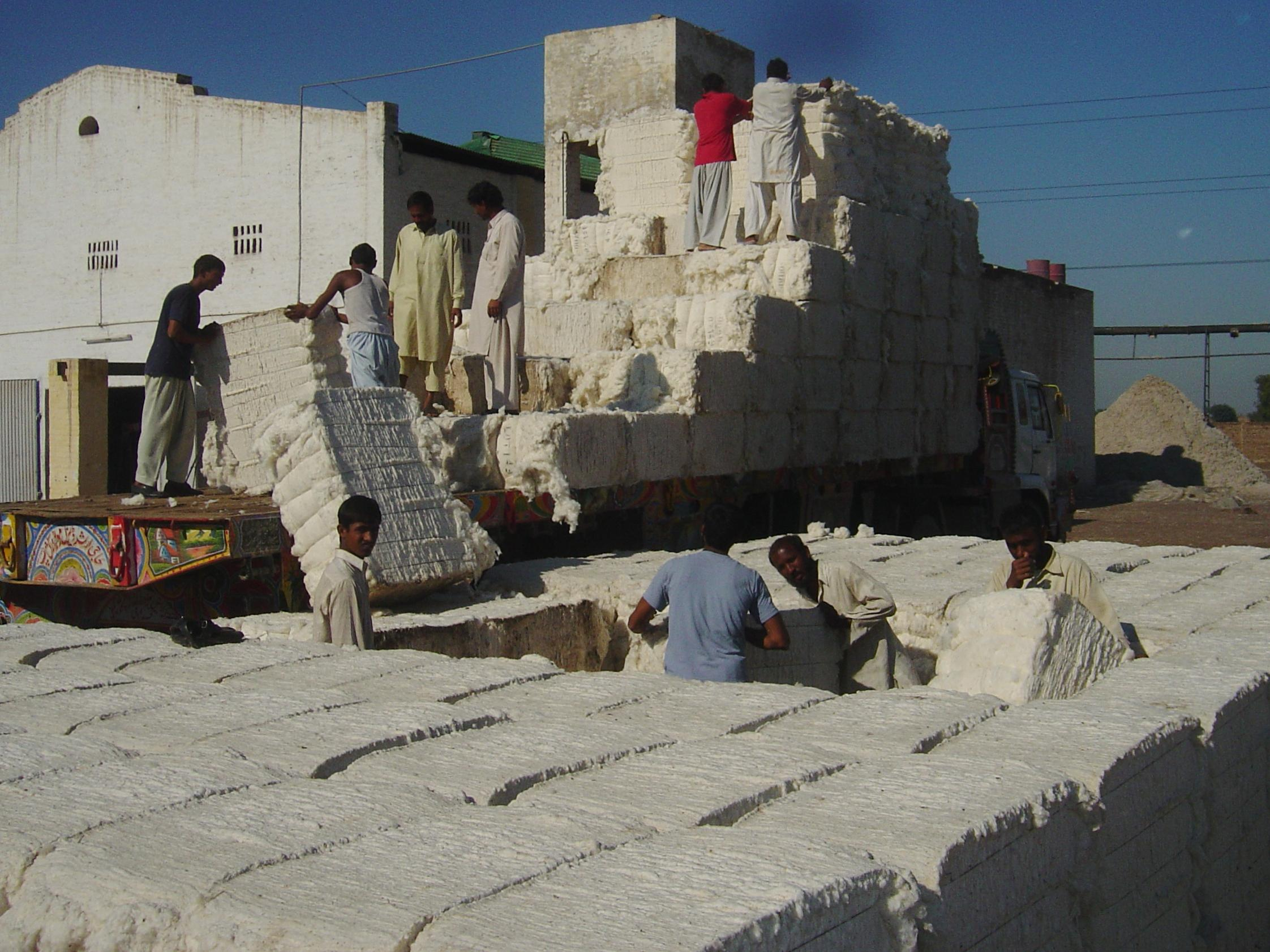 Loading cotton bales © Better Cotton Initiative