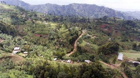 Drone footage of coffee in Uganda © Giuseppe Cipriani for UTZ